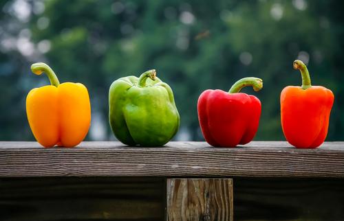 ピーマン パプリカ 同じ 違い 栄養 成分