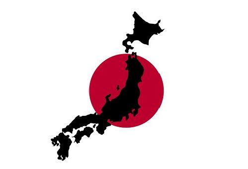 ズッキーニ 産地 日本