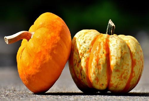 かぼちゃ 国産 輸入