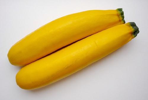ズッキーニ 品種 オーラム 特徴