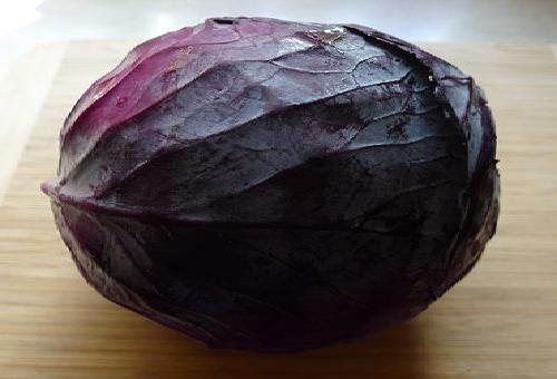 キャベツ 紫 理由