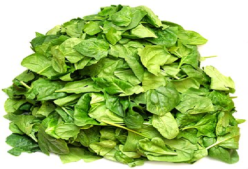 ほうれん草 似てる 野菜