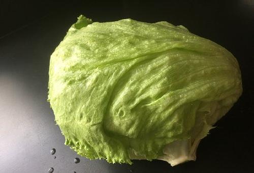 レタス 外側 食べ方 捨てる 必要性