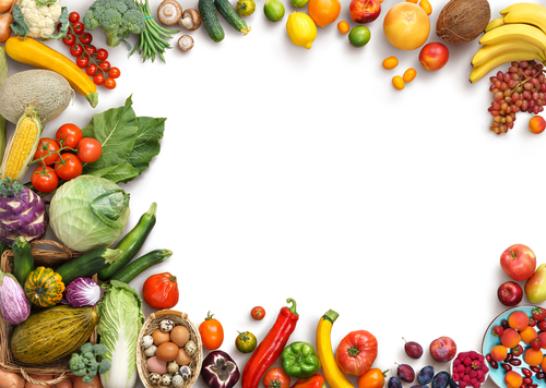 レタス キャベツ 白菜 違い 栄養