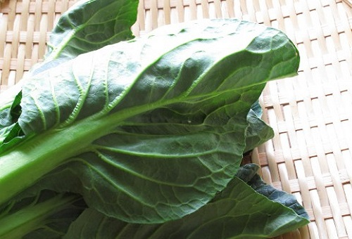 小松菜 品種 夏 冬