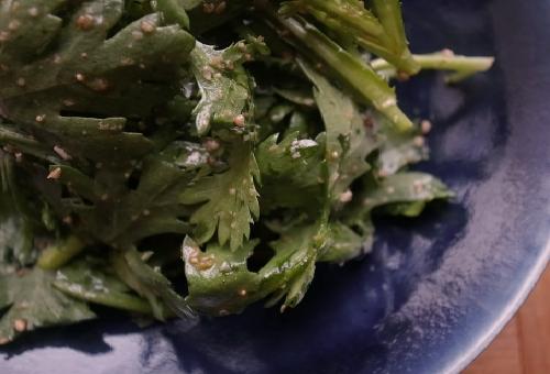 春菊 生食 種類
