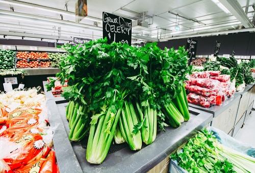 セロリ スーパー 値段 安い 時期
