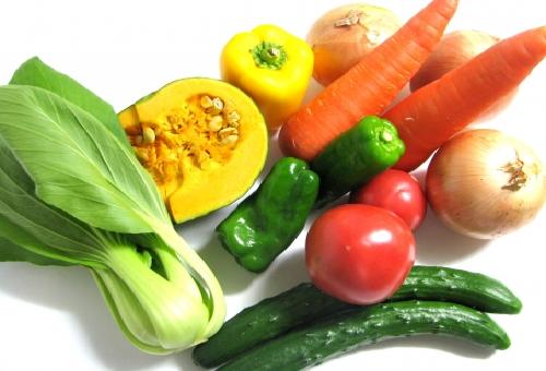 玉ねぎ 野菜 分類