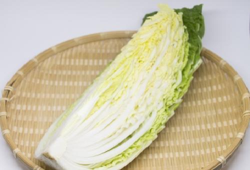 白菜 食べ方 栄養 効能