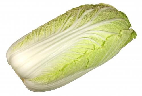 白菜 アレルギー 症状