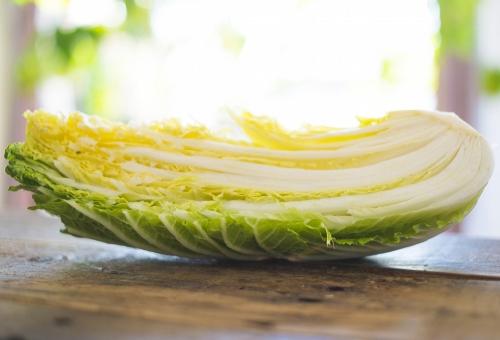 白菜 みじん切り 千切り 方法