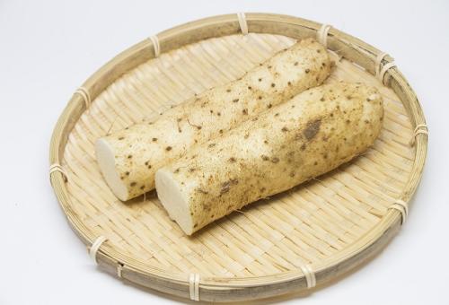 山芋 煮物 カロリー 保存