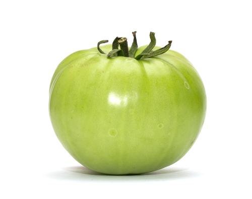トマト 栽培 実 赤く 熟す期間