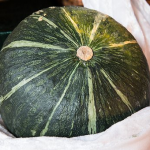 かぼちゃと農薬!国産なら安全なのでしょうか?