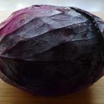 紫キャベツはなぜ紫色?理由について!