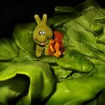 虫を落とすレタスや野菜の洗い方は?レタスにつきやすい害虫は?