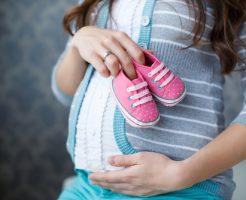 春菊 栄養 妊婦