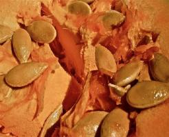 かぼちゃ わた 腐る 原因 賞味期限