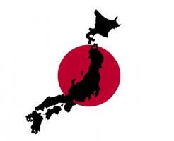 きゅうり 消費量 日本一