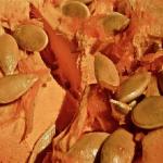 かぼちゃのわたが腐る原因とは?かぼちゃの賞味期限とは?