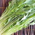 ペットボトルを使う水菜の水耕栽培の方法は?水菜の種類ごとの収穫時期は?