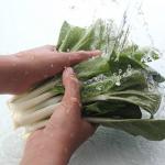 小松菜の土と農薬!これらを取り去る洗い方とは?
