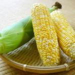 トウモロコシの茎の利用方法は?トウモロコシを食べる以外の用途は?