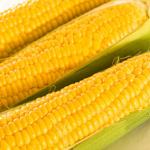 とうもろこしは野菜と穀物どちらに分類されるの?気になる栄養成分について!