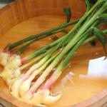 水を使った生姜の保存方法とは?保存期間は?