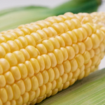 トウモロコシの受粉方法!失敗原因は?美味しいトウモロコシの確認法と茹で時間は?