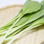 小松菜や野菜に使用する農薬!農薬は登録されているものを!