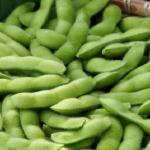 枝豆の保存は生で冷凍?冷蔵?栄養は逃げない?保存期間は?