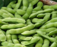 枝豆 保存 生 冷凍 冷蔵 栄養 期間
