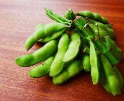 枝豆 タンパク質 含有量 筋肉