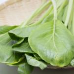 煮物やおひたしや炒め物などに使用する小松菜!1束あたりのカロリーは?