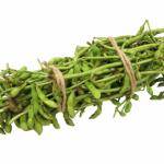 枝豆の理想的な発送とは?方法について!