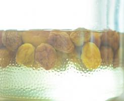 梅 酵母 作り方 発酵