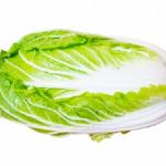 白菜の賞味期限!常温・冷蔵・冷凍・カットした場合は?
