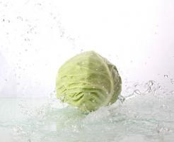 キャベツ 水切り 方法