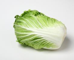 白菜 一玉 重さ 値段 推移 高い 理由