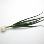 玉ねぎの葉に含まれている栄養とは?その食べ方は?