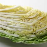 白菜は生で食べられる?毒性や危険は?