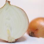 玉ねぎを食べられる動物は限られている!?玉ねぎ中毒とは?
