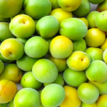 梅の冷蔵庫や冷凍での保存方法と期間とは?おすすめの容器は?