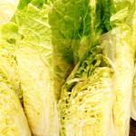 白菜の消費量!日本の都道府県別に比べてみた!