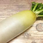 大根の塩もみのやり方は?保存方法は?栄養と日持ちは?