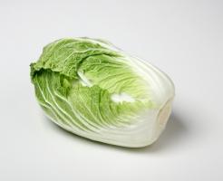 白菜 無双 特徴 育て方