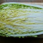 白菜のそれぞれの部分の名称とは?