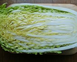 白菜 部分 名称