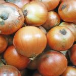玉ねぎの栽培!北海道で栽培されている割合は?